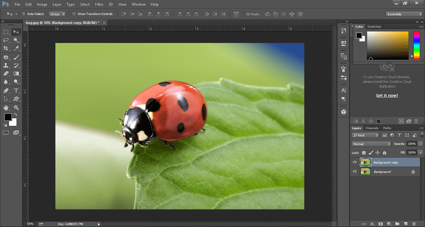 Raw image for clipping path service