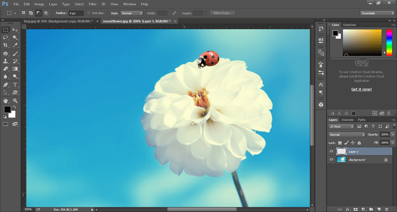 Change background after clipping path service