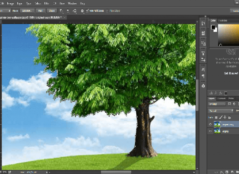 4 Important Tips to Remove Background from Complex Images